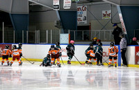 Marystown vs Mt. Pearl Jan. 18 2014