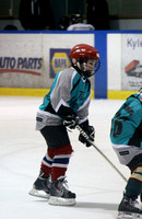 Mt. Pearl vs Teepees squirts 2014 (18) (667x1024)