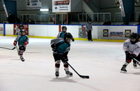 Mt. Pearl vs Teepees squirts 2014 (13) (1024x666)